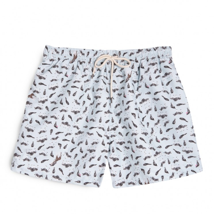 Swim short Blue zebras